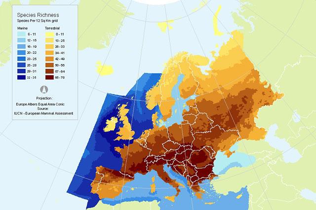 Species richness in Europe - Mammals (source: IUCN European Red List)