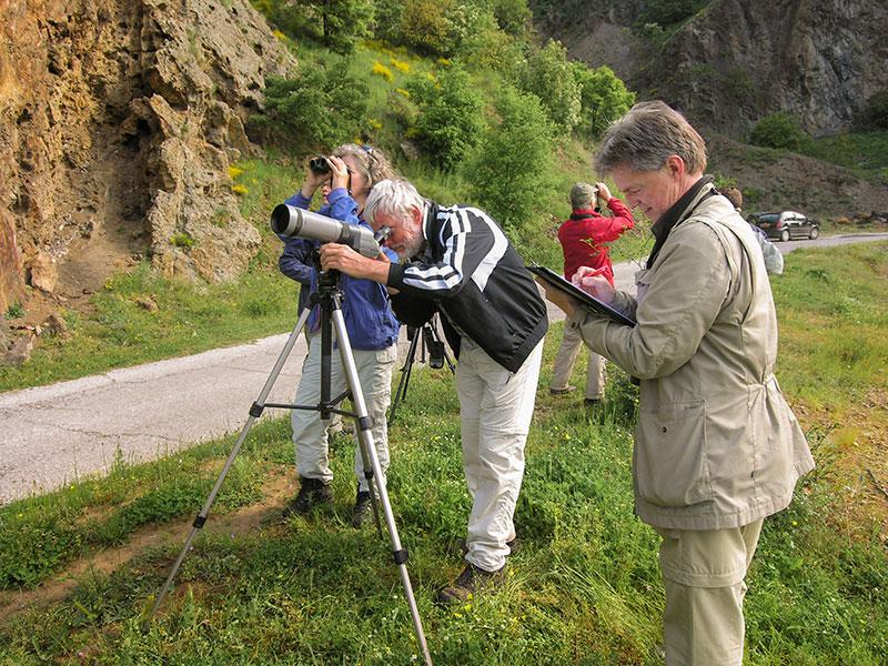 Volunteers performing bird counts in the Eastern Rhodopes, Bulgaria (Photo: Gerard ter Heijne)