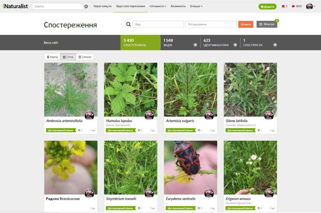 iNaturalist website in Ukrainian